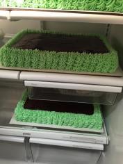 green_chocolate_sheet_cake